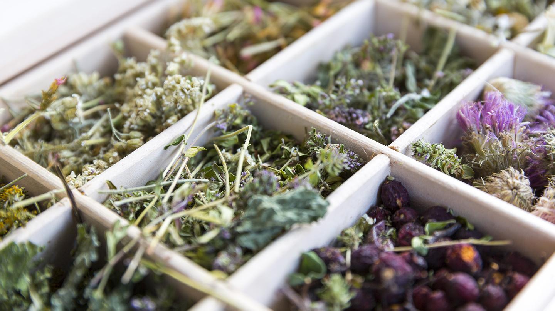 Heilpflanzen bei Frauenbeschwerden: Verschiedene getrocknete Kräuter in einer Holzschachtel.